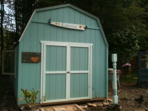 converting shed into chicken coop